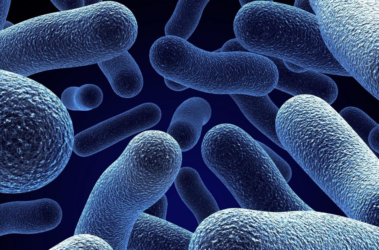spettro apocalisse batterica