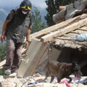 cani eroi terremoto