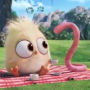 Cartone animato vegano: l'antispecismo spiegato ai più piccoli