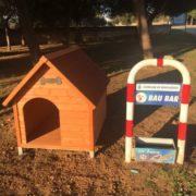 Case per randagi: un rifugio per i cani